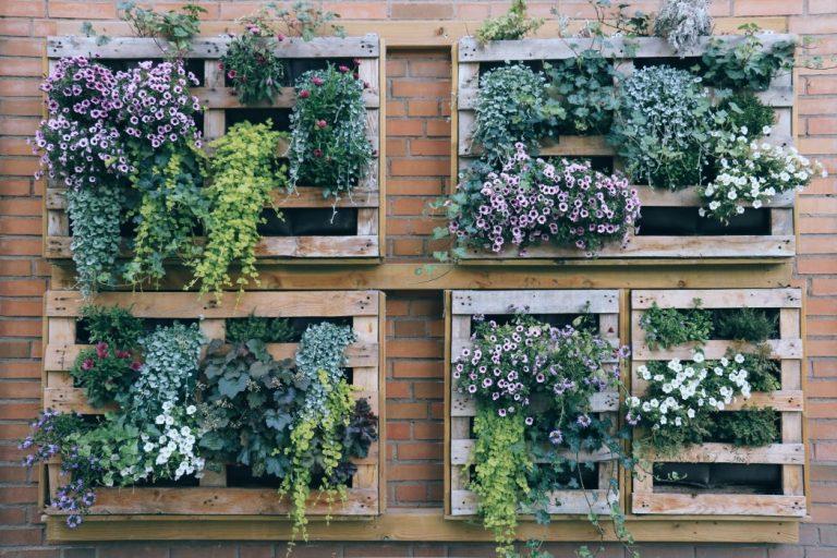 Creare un angolo verde sul tetto o sul terrazzo